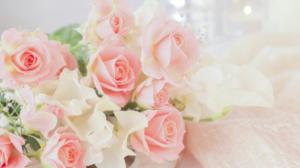 女性に人気な退職祝いプレゼント